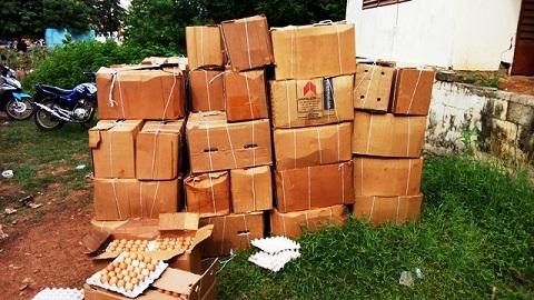 Ville de Gaoua: 200 cartons d'œufs saisis