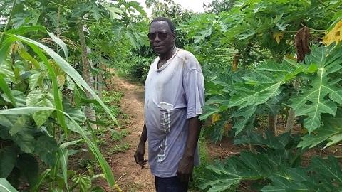 L'Abbé Emile BOMBIRI: Un régénérateur des terres abandonnées