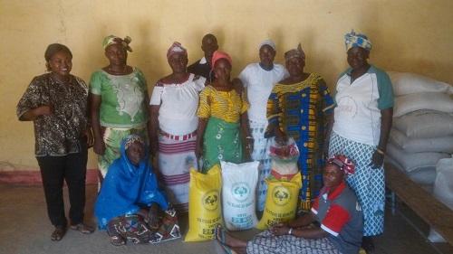 Agriculture du Burkina: «Les femmes ont remplacé les hommes dans les champs», déplorent les femmes de la commune de Bama