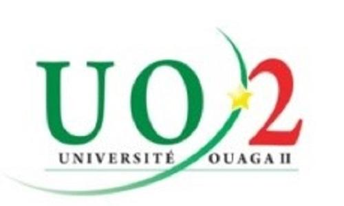 Université Ouaga 2: Ouverture de vingt (20) postes d'Attachés temporaires d'Enseignement et de Recherche (ATER) au titre de l'année académique 2017-2018,