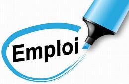 Avis de recrutement d'un (1) chef de service administratif et financier et d'un(e) (1) secrétaire comptable