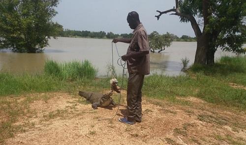 12e édition du SITHO: La mare aux crocodiles de Sabou et le Musée Rayim d'Issouka dévoilés aux visiteurs