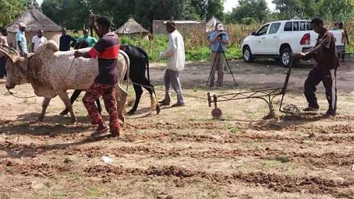 Innovation agricole; Le projet ASMC a formé les artisans et producteurs sur l'utilisation du semoir
