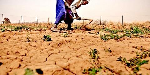 Les effets durables et profonds de la sécheresse sur la pauvreté