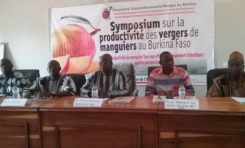 Filière mangue au Burkina Faso: Les acteurs réfléchissent pour améliorer sa production