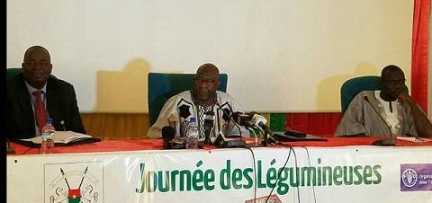 Journée de légumineuses à Koumbané: Jacob Ouédraogo prône la sécurité alimentaire et nutritionnelle