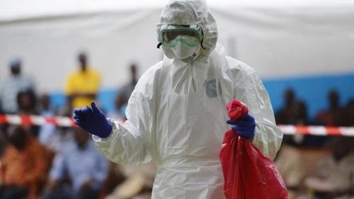 Fièvre de Lassa: Cette fièvre qui fait peur à l'Afrique de l'Ouest