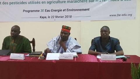 Utilisation des pesticides en agriculture: Le Programme 3E Eau prône une culture maraîchère saine