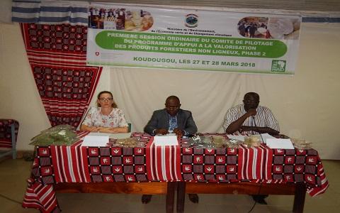Programme d'appui à la valorisation des produits forestiers non ligneux,  phase 2(PFNL2): La première session ordinaire de l'année 2018 du comité de pilotage tenue à Koudougou