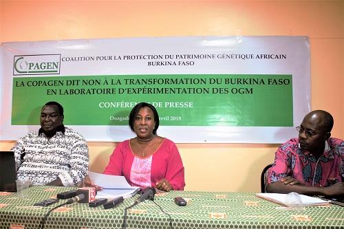 Moustiques OGM au Burkina Faso: Les inquiétudes de la COPAGEN