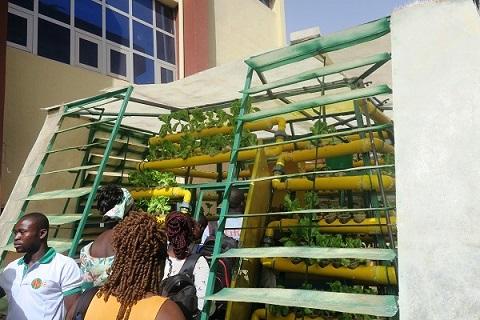 Agri Pyramide: La  Start Up multi utilitaire de Douamba Kévin est opérationnelle