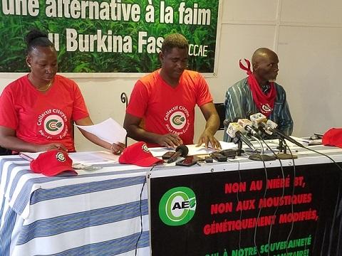 Souveraineté alimentaire et sanitaire: Le Collectif citoyen pour l'agro écologie dit non au niébé Bt et aux moustiques génétiquement modifiés