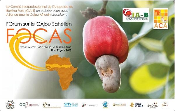 Forum du cajou sahélien FOCAS, le jeudi 21 juin et le vendredi  22 juin 2018 à Bobo-Dioulasso à partir de 08H au Centre Muraz