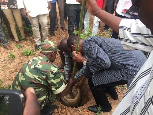 Protection de l'environnement: La fête de l'arbre a débuté ce 20 juin