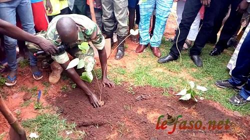 Environnement: L'arrondissement N°2 de Bobo-Dioulasso a lancé sa campagne de reboisement 2018