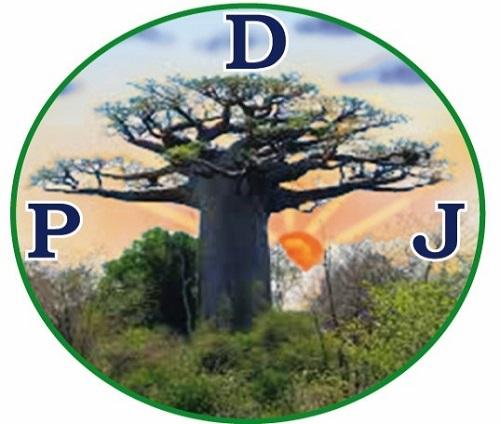 Révision du code électoral: Le Parti pour la démocratie et la jeunesse salue une «avancée démocratique»