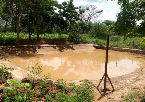Bassin de collecte des eaux de ruissellement: Une solution aux poches de sécheresse