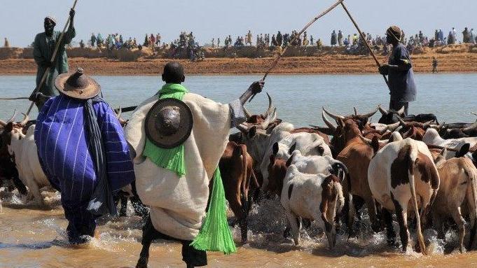 Tribune: Parler de problème d'intégration des Peulhs dans le Mogho est une erreur (1/2)