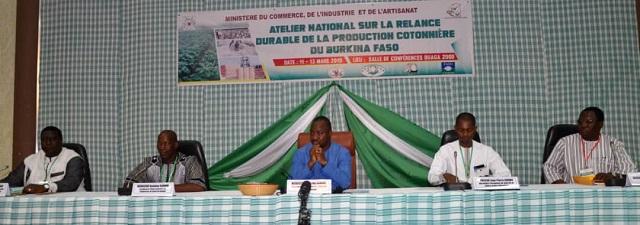Filière coton: Trois jours de réflexion pour relancer le secteur