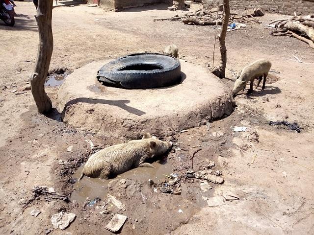 Village de Kari (Mouhoun): Les populations manquent d'eau potable