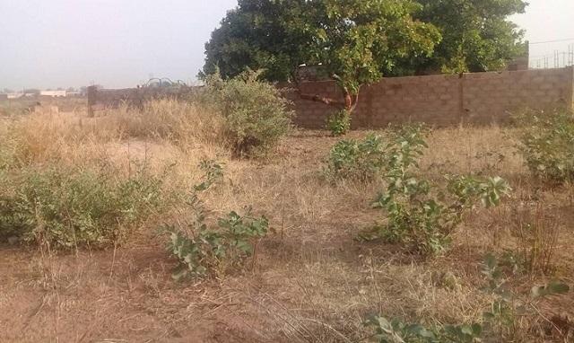 Offre de vente de  parcelle à Bobo-Dioulasso