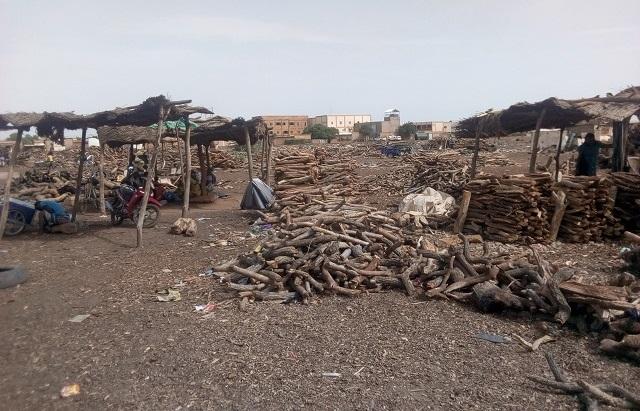 Mouvement des agents des eaux et forêts: Vers une pénurie de bois de chauffe et de charbon de bois?