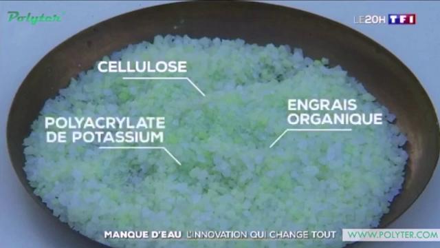 """Agriculture: Le """"polyter"""" une solution révolutionnaire pour les plantes"""